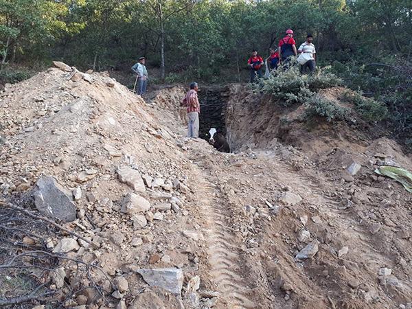 1 3716 - 5 Metre Derinliğindeki Kuyuya Düşen Gebe İneği 5 Saatte Kurtardılar