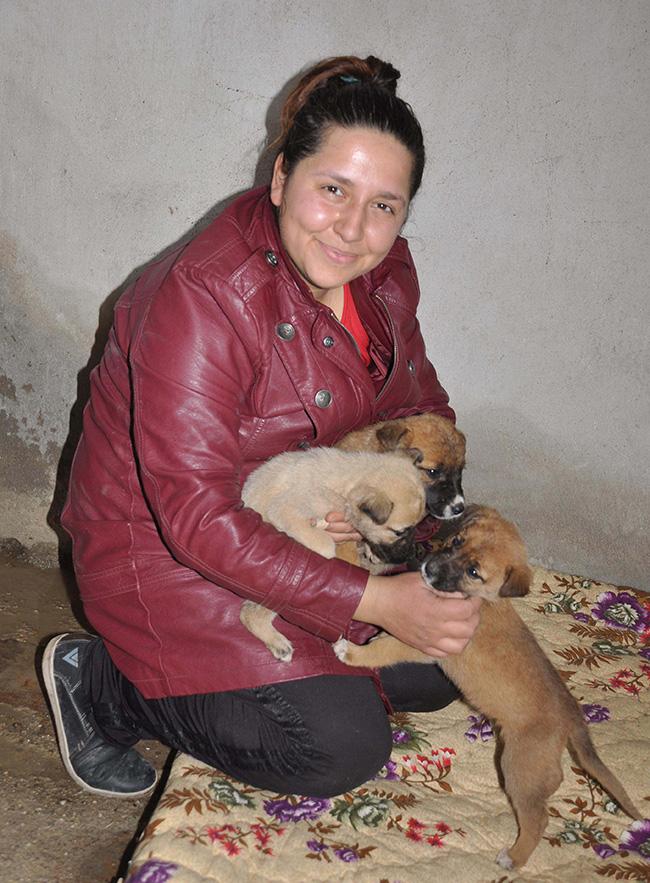 2 512 - Sokak hayvanlarının annesi oldu