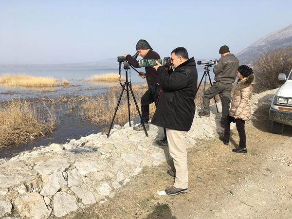 3 994 - Denizli Göllerinde Kuş Sayısı Yarı Yarıya Azaldı