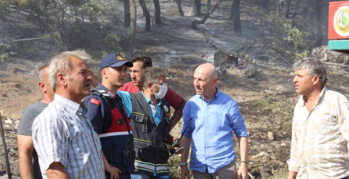 Sarayköy'de bir dönüm alan zarar gördü