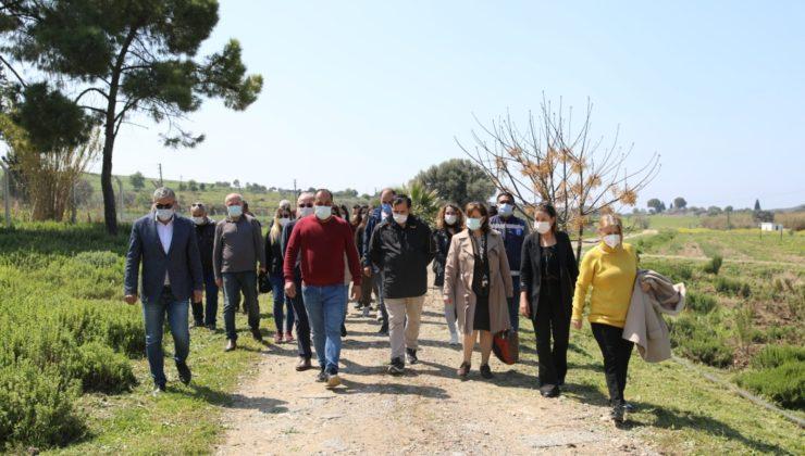 Didim Akköy Serası'na ulusal ziyaretçi akını
