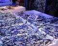 Hamsi avı 28 Ocak'a kadar uzatıldı