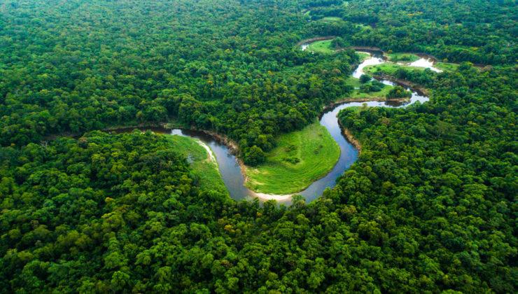 Prysmian, Amazon'da denizaltı kablosu üretecek