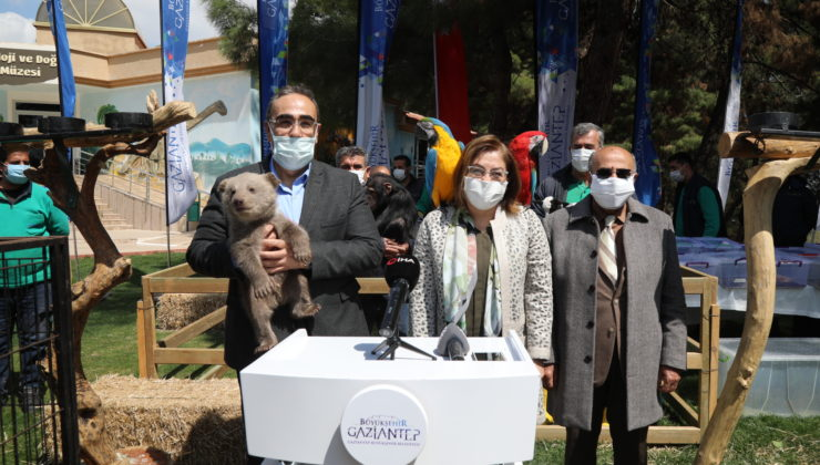 Gaziantep'te hayvanat bahçesi etkinliği