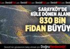 SARAYKÖY'DE KÜLE DÖNEN ALANDA 830 BİN FİDAN BÜYÜYOR
