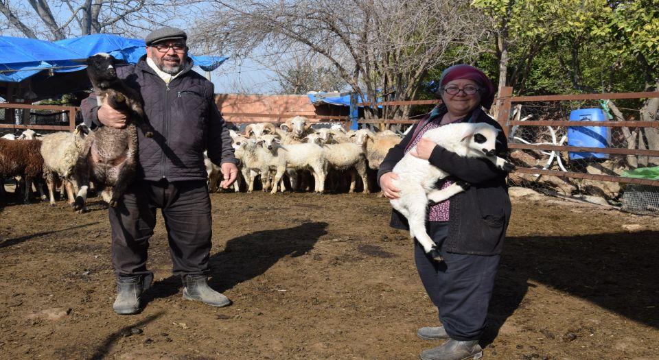 Koyun sevgisi taşınmalarına vesile oldu