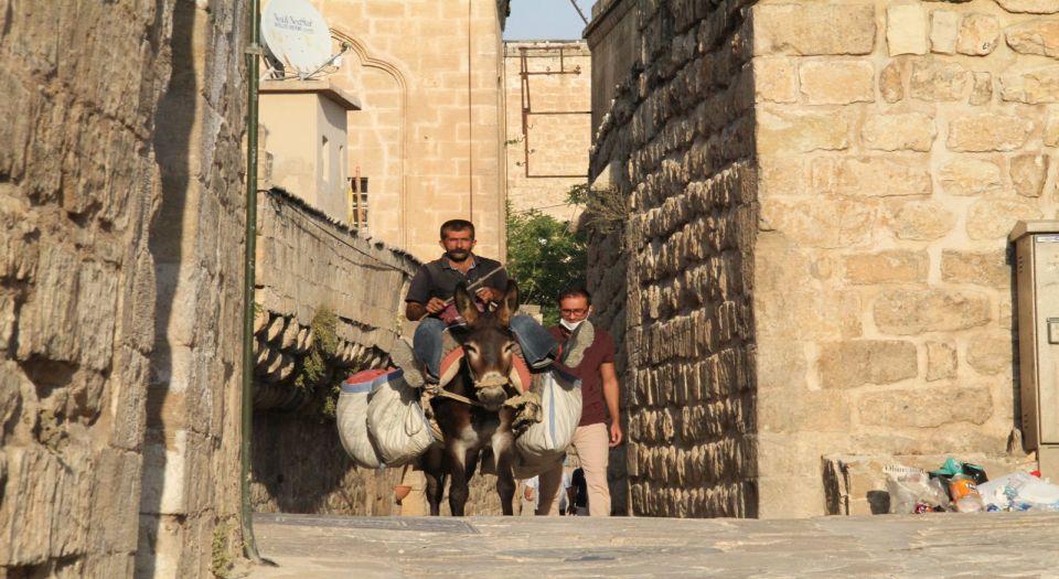 Mardin'in yükünü eşekler çekiyor (Özel Haber)