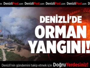 DENİZLİ'DE  ORMAN YANGINI