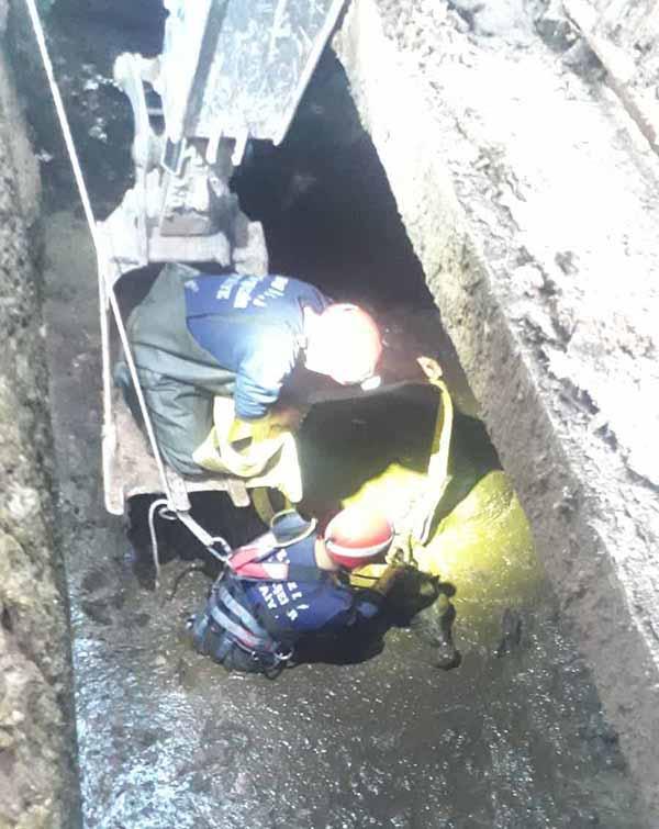 atik tahliye kanalina dusen inegi itfaiye kurtardi 9948 dhaphoto2 - Atık tahliye kanalına düşen ineği itfaiye kurtardı