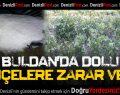 Buldan'da Dolu Bahçelere Zarar Verdi