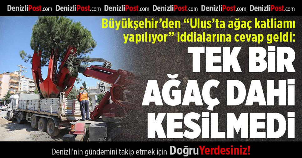 """Büyükşehir'den """"Ağaç Katliamı"""" İddialarına Yanıt"""