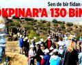 Gökpınar'a 130 Bin Fidan