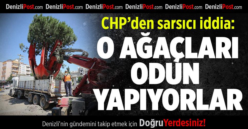 CHP'DEN SARSICI İDDİA:KESİLEN AĞAÇLARI ODUN YAPIYORLAR