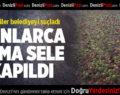 Çivril'de Tonlarca Elma Sele Kapıldı
