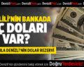 DENİZLİLİ'NİN BANKALARDA KAÇ DOLARI VAR?