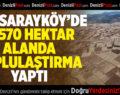 DSİ, Sarayköy'de 19 Bin 570 Hektar Alanda Toplulaştırma Yaptı