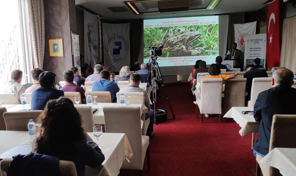 endemik tur tavas kurbagasi tel orguyle korunacak 6779 dhaphoto3 - Endemik tür 'Tavas kurbağası' Tel Örgüyle Korunacak