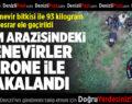 Tarım Arazisindeki Kenevirler Drone İle Yakalandı