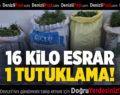 Çal'da 16 Kilo esrara 1 Tutuklama