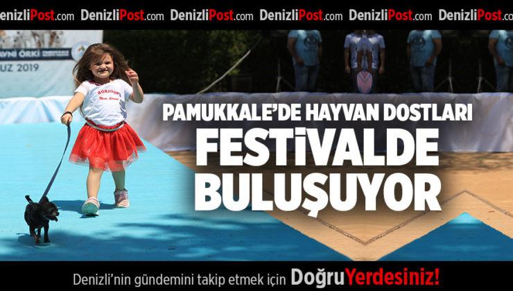 PAMUKKALE'DE HAYVAN DOSTLARI FESTİVALDE BULUŞUYOR