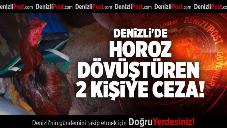 DENİZLİ'DE HOROZ DÖVÜŞTÜREN 2 KİŞİYE CEZA!