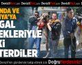 Kangal köpekleriyle Hollanda ve Almanya'ya tepki