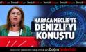 KARACA MECLİSTE DENİZLİ'Yİ KONUŞTU
