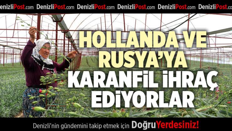 DENİZLİ'DEN HOLLANDA VE RUSYA'YA KARANFİL İHRACATI