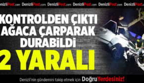 Kontrolden Çıkan Otomobil Ağaca Çarparak Durabildi: 2 Yaralı