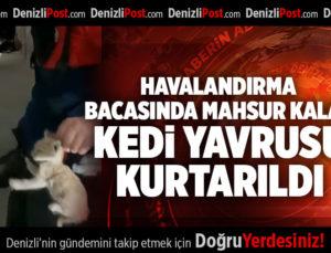HAVALANDIRMA BACASINDA MAHSUR KALAN KEDİ YAVRUSU KURTARILDI
