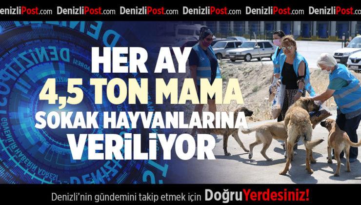 ATIK GIDALARDAN AYLIK 4,5 TON MAMA ÜRETİLİYOR