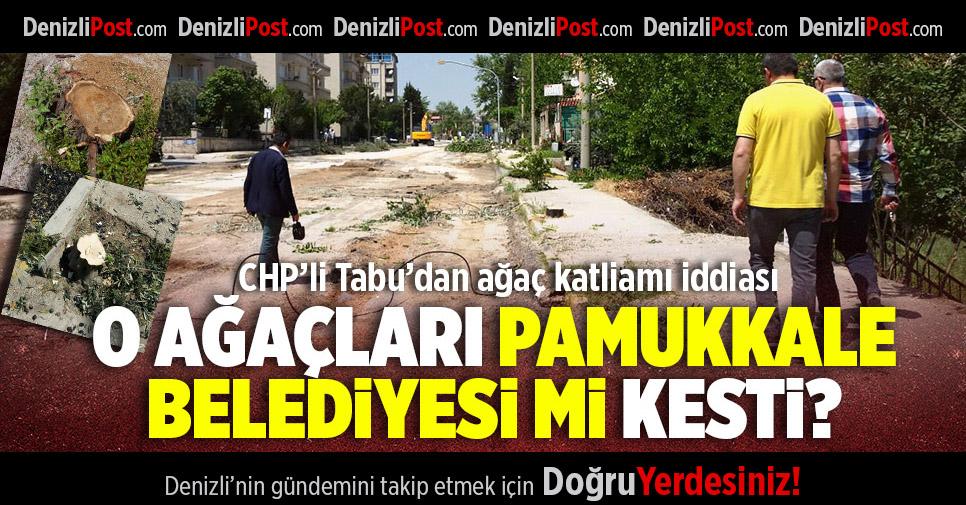 CHP'li Tabu'dan Ağaç Katliamı İddiası