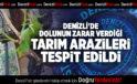 DENİZLİ'DE DOLUNUN ZARAR VERDİĞİ TARIM ARAZİLERİ TESPİT EDİLDİ