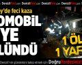 Sarayköy'de Feci Kaza: 1 Ölü 1 Yaralı