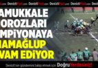 Pamukkale Horozları Şampiyonaya Namağlup Devam Ediyor