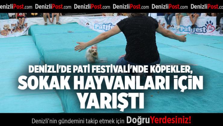 DENİZLİ'DE PATİ FESTİVALİ'NDE KÖPEKLER, SOKAK HAYVANLARI İÇİN YARIŞTI