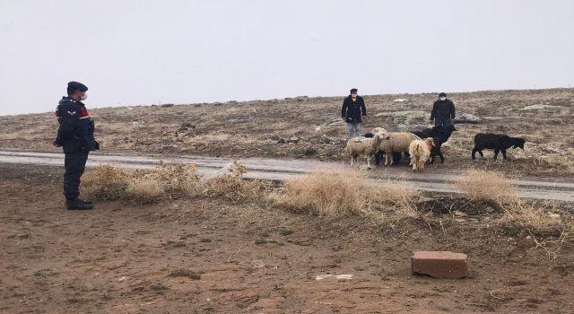 Aksaray'da çiftçilere yem karma makinası desteği