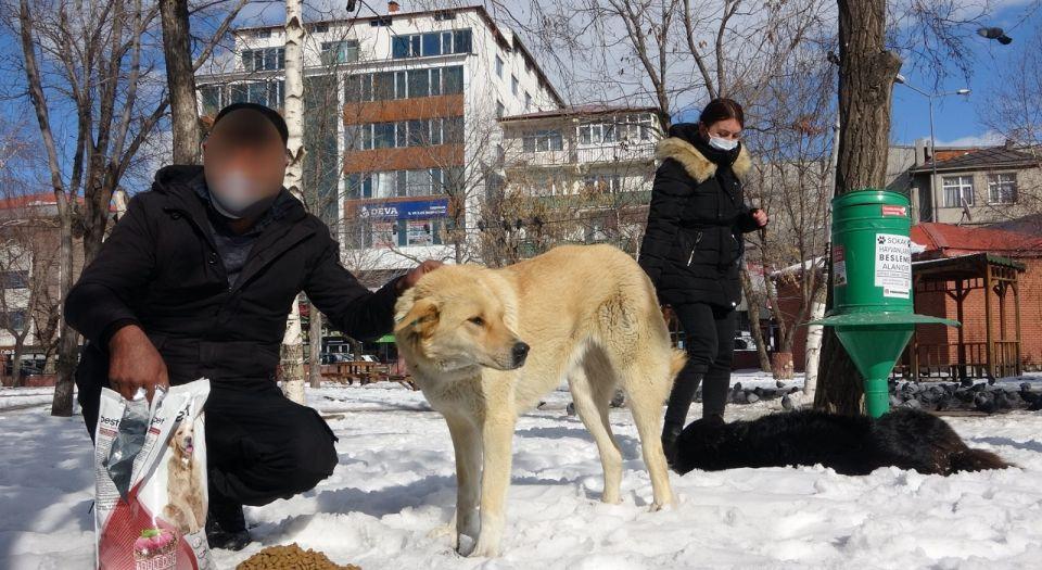 Ardahan'da sokak hayvanlarını besledi, yargılanmaktan kurtuldu!