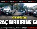 Çameli'de kaza: 2 yaralı