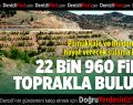 Sulama kanalı alanına 22 bin 960 fidan