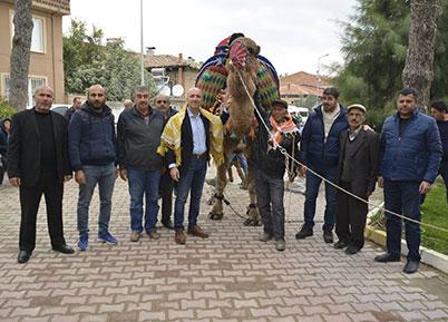 Sarayköy'de Havut Giydirme Töreni