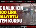 Taze balık için 300 Lira Maliyetli Sistem Kurdu