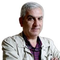Seyit Ali Gürsoy