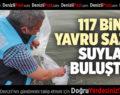 117 BİN YAVRU SAZAN SUYLA BULUŞTU